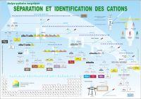 Analyse qualitative inorganiques: Régime de la séparation et la identification des cations