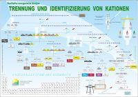 Qualitative anorganische Analyse: Trennung und Identifizierung von Kationen