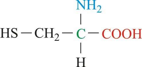 cysteine chemistry dictionary glossary
