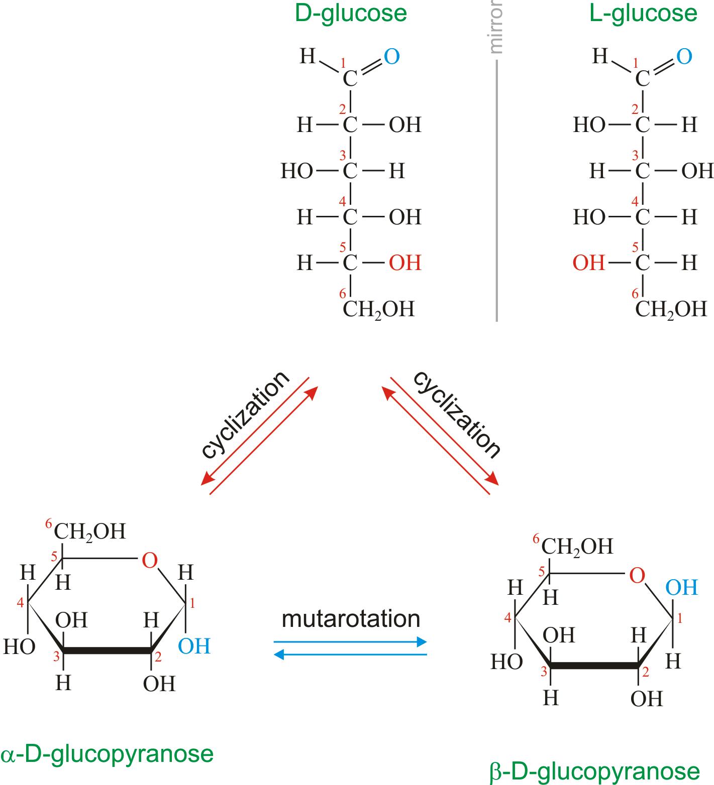 L Glucofuranose Chemistry Gloss...