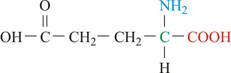 Glutaminska kiselina