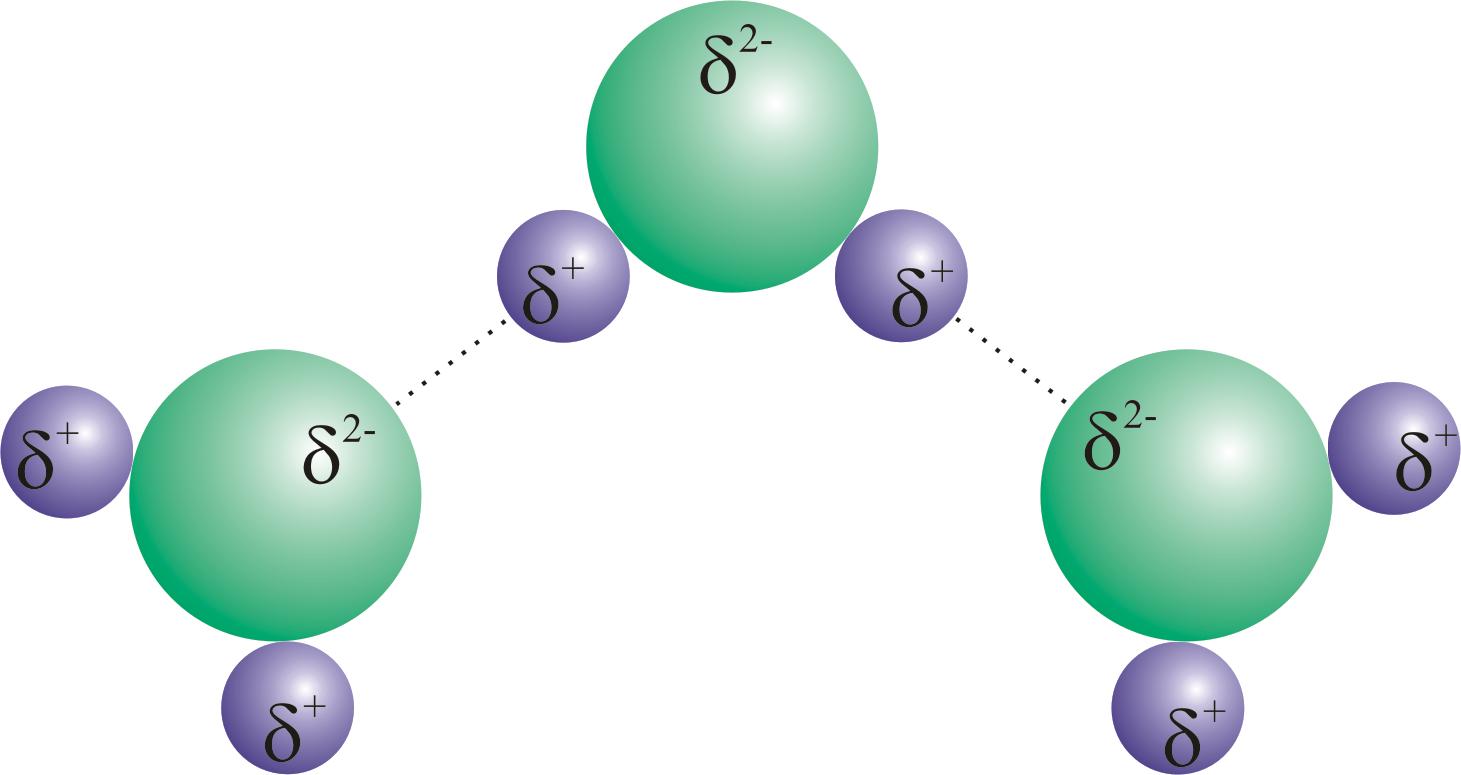 Vodikova veza