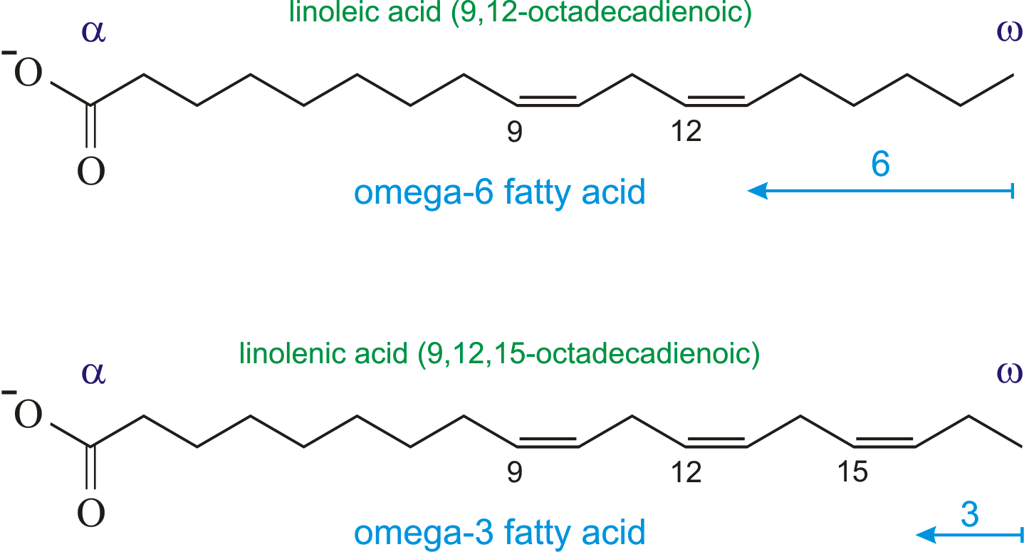 Omega-3 and omega-6 fatty acids