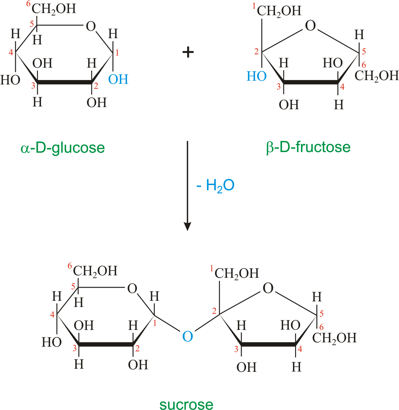 d glucose and fructose relationship problems