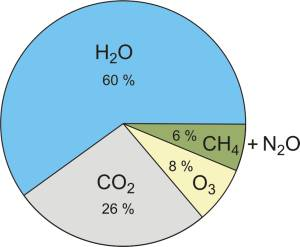 Contribution of the most important greenhouses gasses to the greenhouse effect